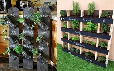 Tendências para a jardinagem