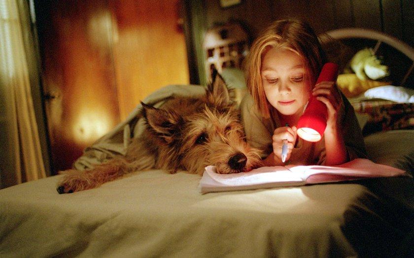 Meu Melhor Amigo (2005)