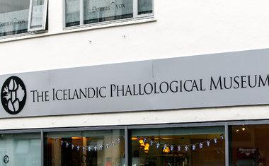 Museu Falológico Islandês | Reykjavík, Islândia