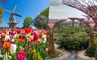 Tour virtual: 10 jardins incríveis ao redor do mundo para ver online