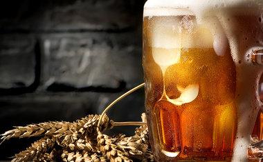 Academia da Cerveja recebe cientista para palestra gratuita sobre as tendências da bebida