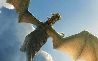 Meu Amigo O Dragão 2