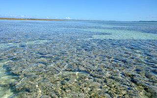 Praia de Maragogi, Maragogi (Alagoas)