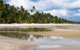 Praia dos Carneiros, Pernambuco (Pernambuco)