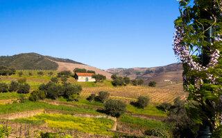 Vale do Douro, Portugal