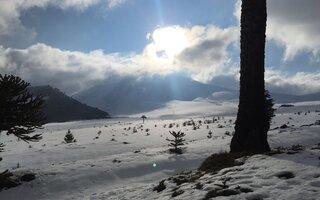 Neve + Sol