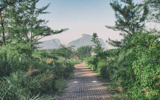 Passear no Bosque da Barra