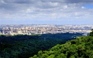 TRILHA MAIS AVANÇADA: Trilha da Pedra Grande, Parque Estadual da Cantareira