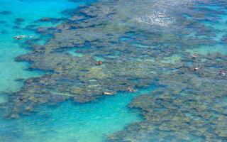 HANAUMA BAY (OAHU)