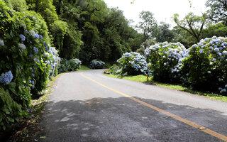 Estrada da Graciosa | Paraná