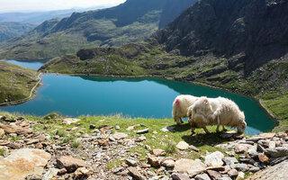 Snowdonia   País de Gales