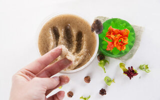Esfoliação de açúcar mascavo