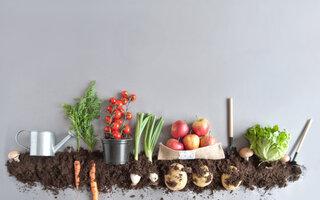 Coma mais orgânicos