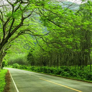 Viagens Nacionais: 5 rotas românticas para desbravar o Brasil a dois
