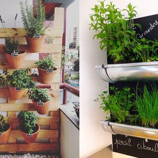 Casa e decoração: Replantando alimentos: 7 ideias de como fazer a sua própria horta em casa