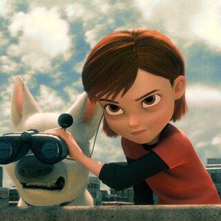 Cinema: 20 filmes com pets para ver ao lado do seu melhor amigo