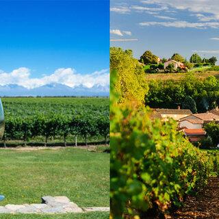 Viagens Internacionais: 8 destinos ao redor do mundo perfeitos para quem ama vinho