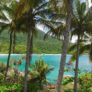 Viagens Nacionais: Conheça Ilha Grande, o paraíso de águas cristalinas no Rio de Janeiro