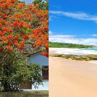 Viagens Nacionais: Para se programar: 10 destinos brasileiros que prometem bombar no verão 2018