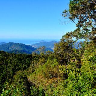 Viagens Nacionais: 5 trilhas próximas a São Paulo que você precisa conhecer