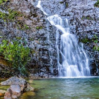 Viagens Nacionais: Conheça o Parque Estadual Serra do Mar, incrível área verde próxima a São Paulo