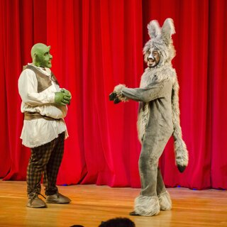 Teatro:  Shrek Musical TYA