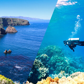 Viagens Nacionais: Ilha da Trindade é um dos locais mais isolados do litoral brasileiro; saiba mais!