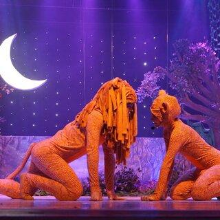Teatro: Rei Leão - o Musical
