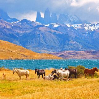 Viagens Internacionais: 9 destinos imperdíveis na América do Sul para quem ama natureza