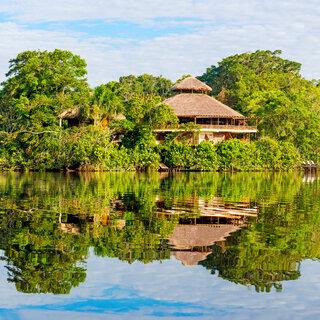 Viagens Nacionais: Muita natureza: 5 lugares imperdíveis para conhecer no Amazonas