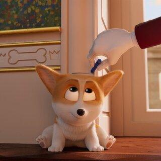 Cinema: Corgi - Top Dog