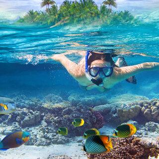 Viagens Nacionais: 5 lugares no Brasil para nadar com peixes coloridos