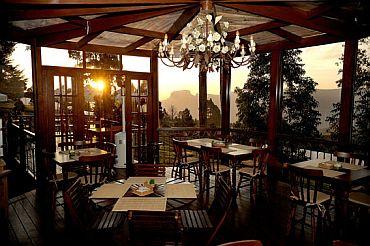 Café Landscape