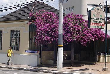 Confeitaria Vó Guilhermina Francisca