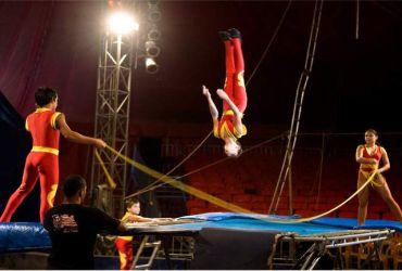 Viagens: Circo Las Vegas