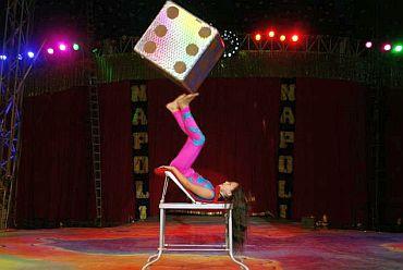 Circo Di Napoli
