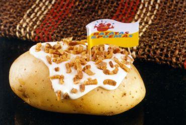 Batatas e Poemas- Beiramar Shopping