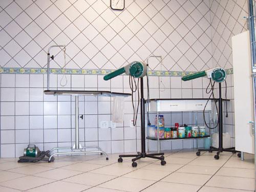 Clínica Veterinária Santo André
