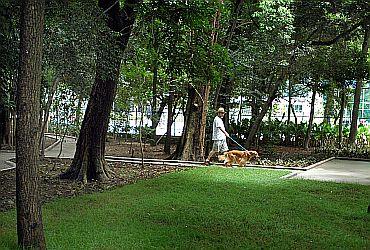 Parque Municipal Mário Covas