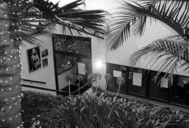 Oficina de Atores Nilton Travesso