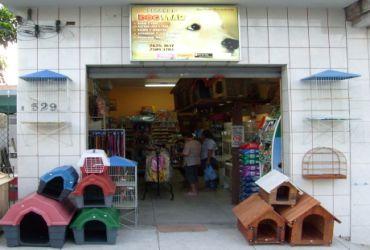 Compras: Pet Shop Dogstar