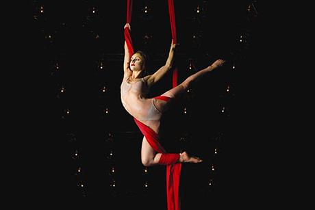 Cirque du Soleil Quidam
